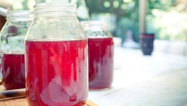 29 ok, amiért jó ha kombucha teát iszunk