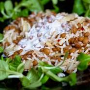 Mujaddara: rizs és lencse joghurttal